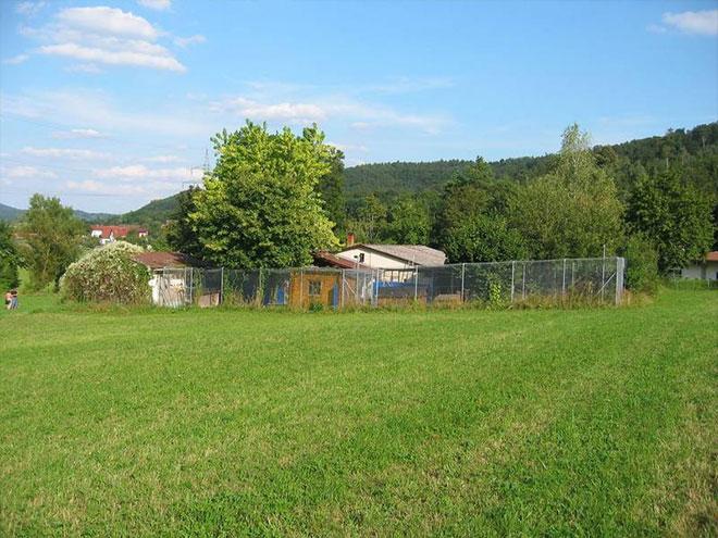 Tierheim Schorndorf - im Grünen gelegen